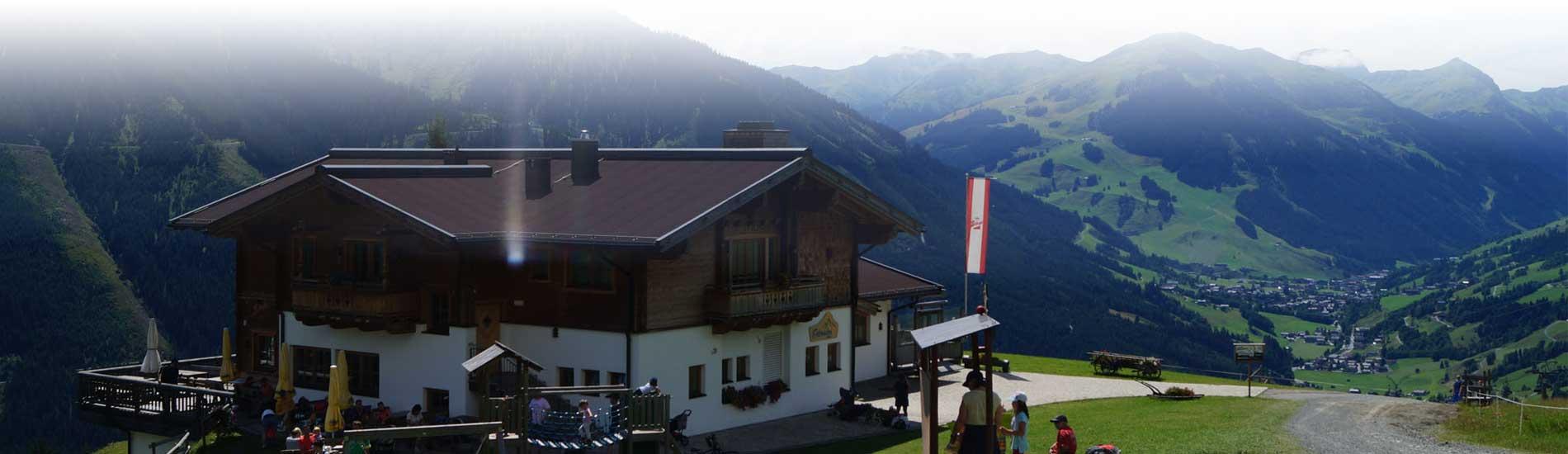 Ederalm im Pinzgau